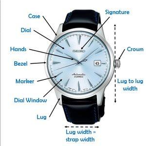 Other - Watch Anatomy